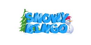Snowy Bingo Casino review